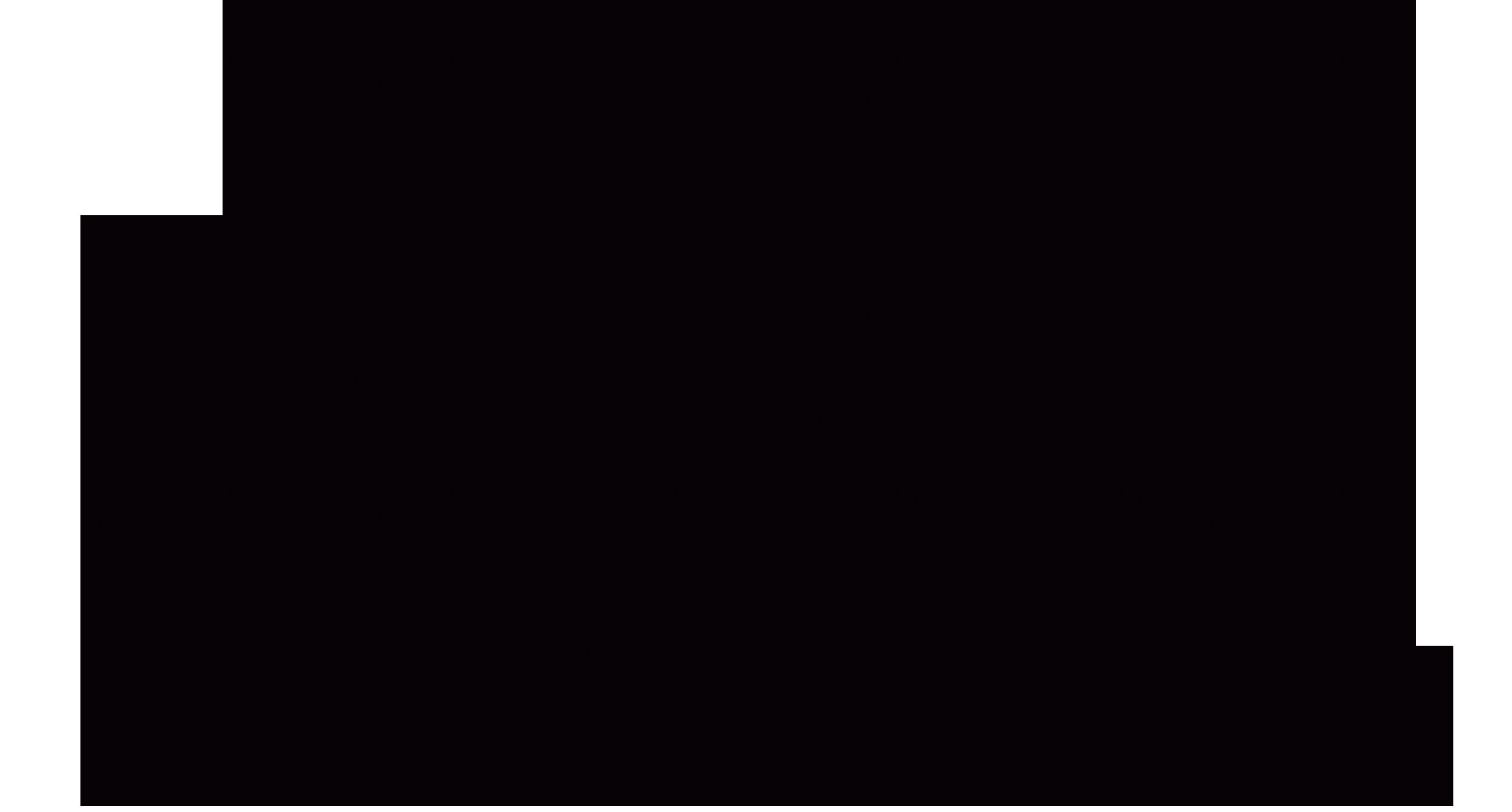 SIBIIR logo
